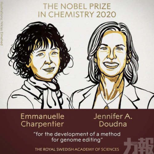 諾貝爾化學獎:兩女科學家開發基因組編輯方法